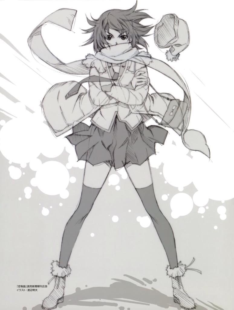 Monogatari Series Heroine Book Hitagi Senjougahara